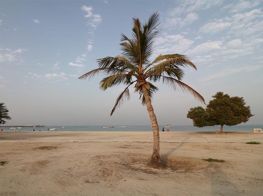 Free trade zone kish island iran: Facts City without river with best iran beaches
